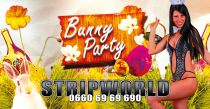 b_210_212_16777215_00_images_slider_stripworld_ostern.jpg